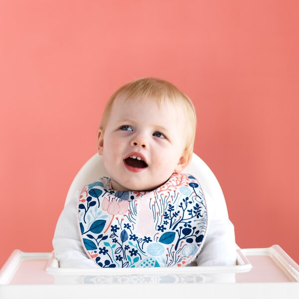DwellStudio Meadow Bib & Burp Set