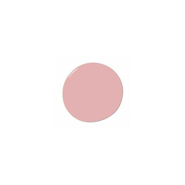 DwellStudio Rich Pink Wall Paint