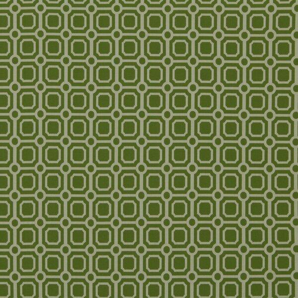 DwellStudio Palm Canyon Fabric - Lime