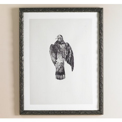 <strong>DwellStudio</strong> Pigeon Intaglio Artwork