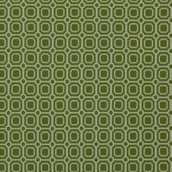 <strong></strong> Palm Canyon Fabric - Lime