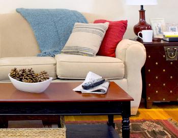 Budget-Friendly Living Room