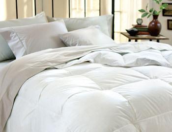 Bedding Basics Under $89.99
